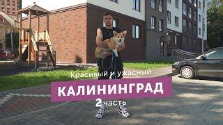 Калининград пляжи битком цены растут но я купил квартиру. Обзор спустя полгода жизни.