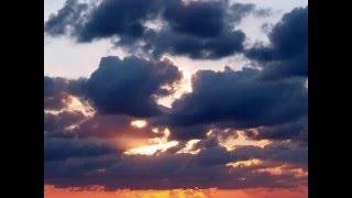 Aafje Heynis: Erbarme Dich, mein Gott (Matthäus-Passion) by Bach
