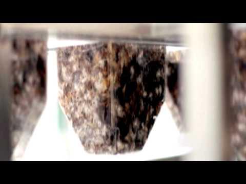 Magical Power Of Mushrooms - Award Winning Documentary - Must Watch