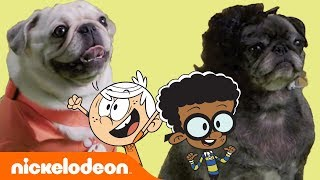 Lincoln & Clyde's Best BFF Moments 🐾 Pug House-Style | The Loud House | Nick