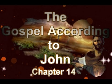 14 chapter essay gospel john Gospel of john - a first hand account of the life of jesus its outline the author identifies himself in the last chapter of the gospel.