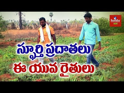 Back To Nature : Young Farmers Success Story Of Vegetables Cultivation | Natural Farming | hmtv Agri