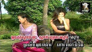 ~🎼🌼 វិប្បដិសារីសម្ផស្សភូង (ហួយ-មាស) / Vipdekserey Somphoss Phoung 🌺🎼~ By: ទូច-ស៊ុននិច Touch Sonnich