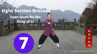 Ba Duan Jin 07 (Eight Section Brocade): Zan Quan Nu Mu Zeng Li Qi