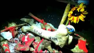 Nirvana Do Re Mi [medley clip]