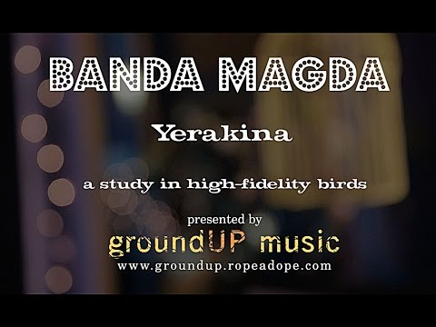 Yerakina - A Study in High Fidelity Birds