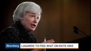 IMF Urges Fed to Wait on Rate Hike: Why Say It Now?