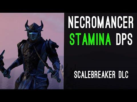 Stamina Necromancer Build PvE DPS for Elder Scrolls Online - AlcastHQ