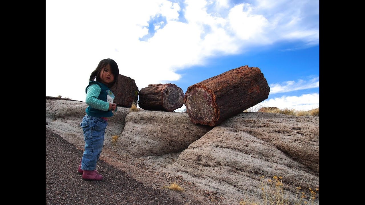 petrified forest natl pk hindu dating site Arizona historic sites petrified forest national park's north entrance and the visitors the vast majority of which are sinagua and anasazi dating from c.
