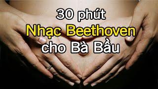 Nhạc Beethoven cho bà bầu giúp thai nhi thông minh 30 phút - GiupMe.com