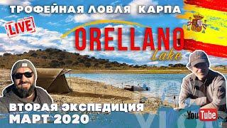 Трофейный карпфишинг на озере Орельяно Испания вторая экспедиция выпуск 1