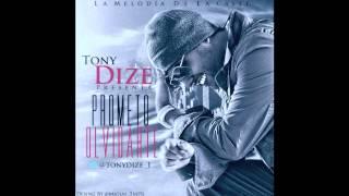 Tony Dize - Prometo Olvidarte (Original) (Letra)