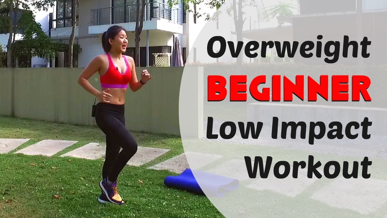 Overweight beginner low impact home workout burn cals