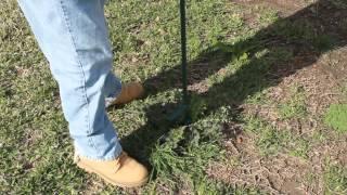 VR to 255sage: Gardening Tip - Weeds