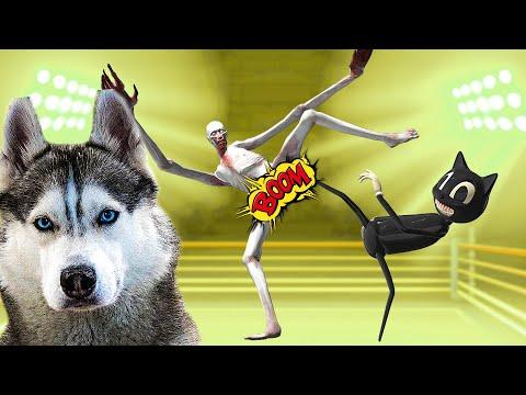 ХАСКИ БАНДИТ ВСЕ SCP СЕРИИ ПОДРЯД!! (Хаски Бандит) Говорящая собака
