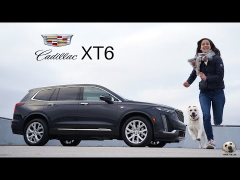 2020 Cadillac XT6: Andie the Lab Review!