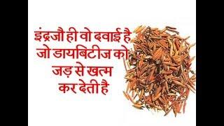 इंद्रजौ ही वो दवाई है जो डायबिटीज को जड़ से खत्म कर देती है || Ayurved Samadhan ||