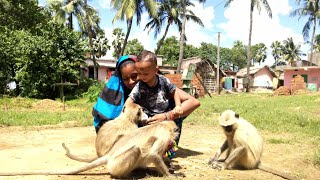 Nothing impossible in love || Mother and son very close to langoors