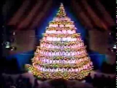 Singing Christmas Tree Edmonton.Singing Christmas Tree Edmonton Ab