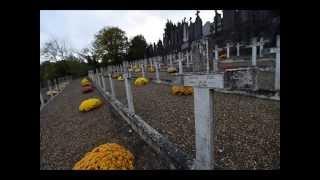 Commémoration armistice à Vienne (Isère)
