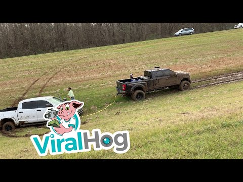 The Bus Driver - Redneck Rescue: Ford Pickup Pulls Toyota Truck Out Of The Muck