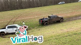 Ford Truck Pulls Brand New Toyota Tundra out of Rut || ViralHog