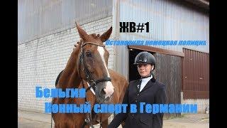 ЖВ#1  Конный спорт в Германии.Остановила немецкая полиция.Бельгия