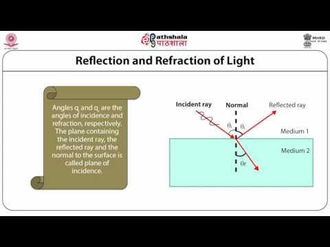 Introduction to Optics (BIOPHY)