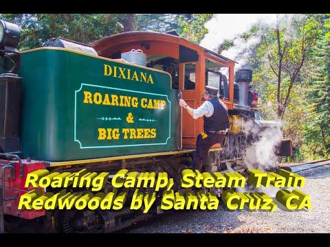 cTv, Riding the Rails, Roaring Camp Steam Train, Henry Cowell Park, Felton