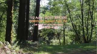 30803 NE Sunset Falls, Rd - Yacolt, WA - A River Runs Through It