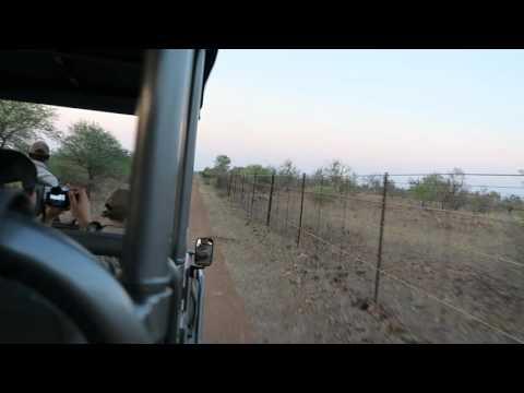 Driving along Mozambique border, Singita Lebombo, Kruger Park, South Africa, 2015-10-07