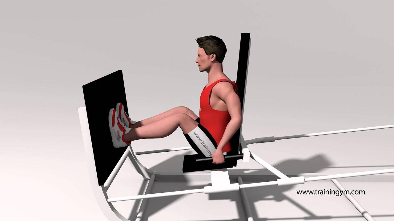 Prensa de piernas horizontal