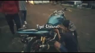 Parodi tiwas tuku ninja jebule pilih tiger