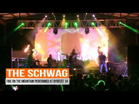 FIRE ON THE MOUNTAIN - THE SCHWAG - BYRDFEST 14