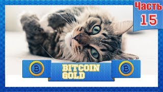 Криптовалюта BITCOIN GOLD #15 BTG