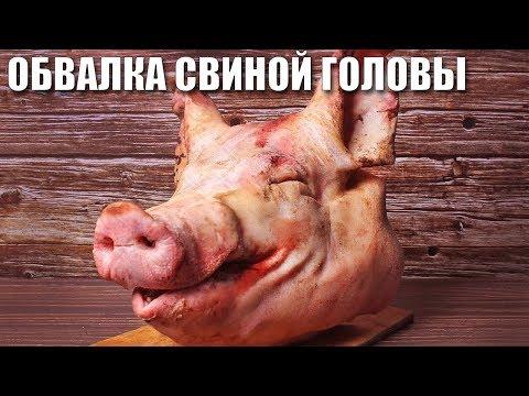 Как бысро обвалять СВИНУЮ ГОЛОВУ. Что можно приготовить из свиной головы.