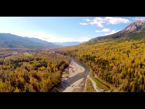LaunchPad Media - Fly Fishing the Elk River in Fernie, BC