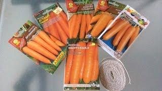 Посадка моркови в грядку. Два способа посадки.(В этом видео я показываю два способа посадки моркови в грядку., 2015-03-28T20:40:42.000Z)