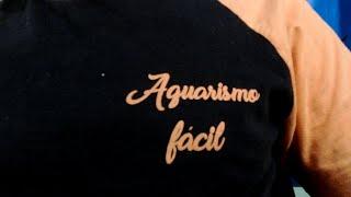 AO VIVO!  Aquarismo Fácil 10/10/2019
