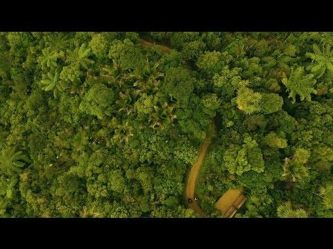 Immerse yourself - Palmerston North City & Manawatu