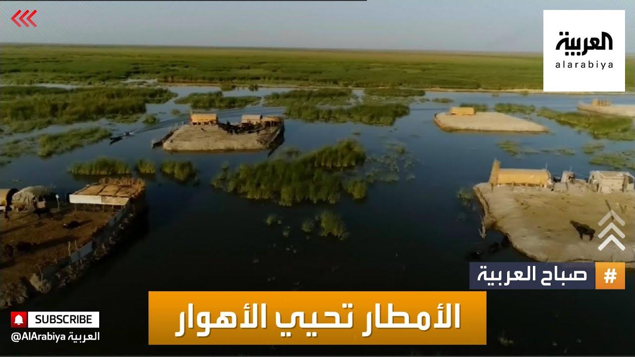 صباح العربية | الأمطار تنعش الأهوار العراقية وتعيد أهلها  - نشر قبل 2 ساعة