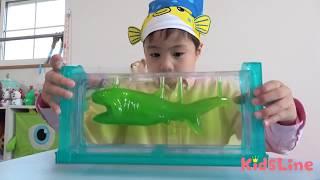 グミ 深海研究所 ギョギョギョ!! メガマウスザメ ダイオウイカ 料理 こうくんねみちゃん