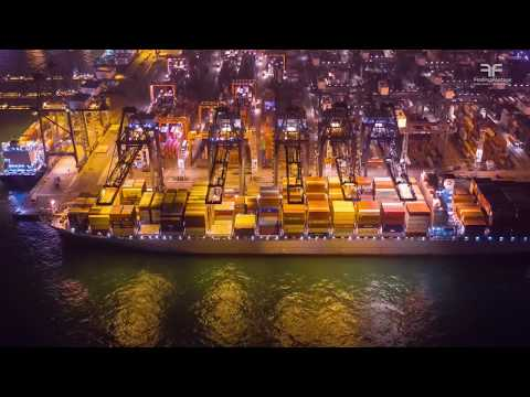 Container Terminal & Cargo Logistics / Stock Video Collection - Free Footage