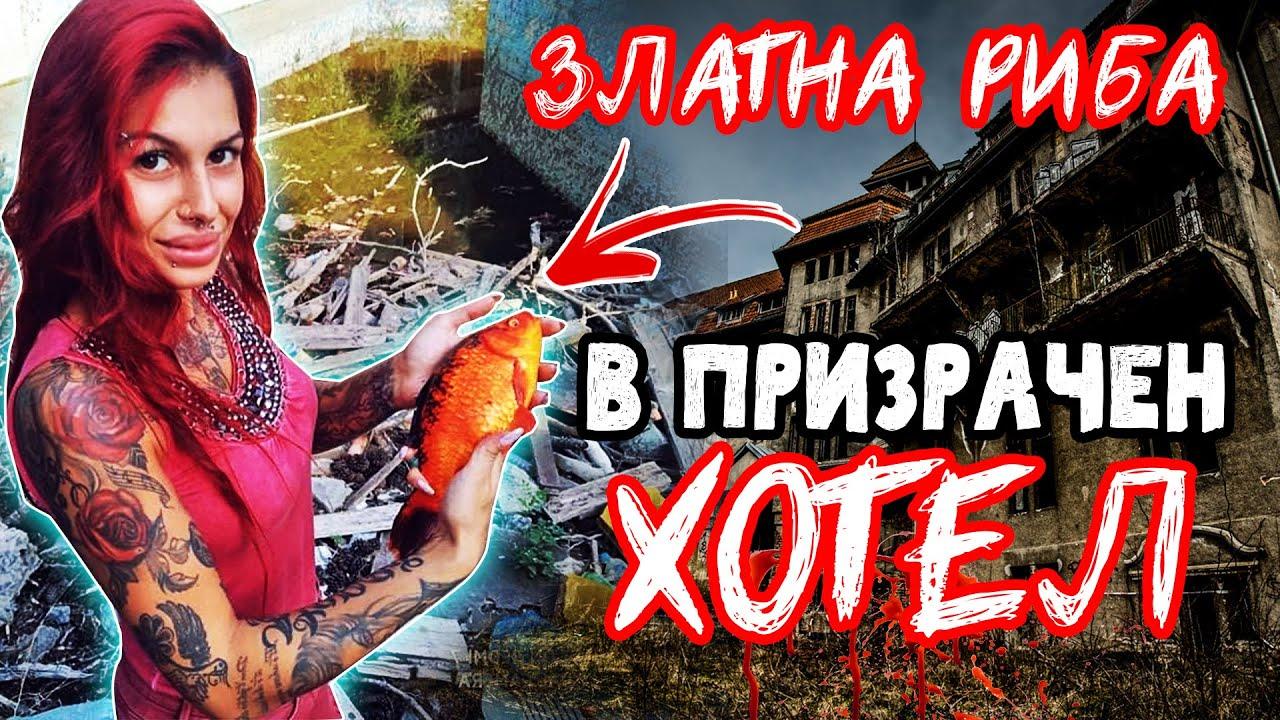 ЖЕНА ХВАНА 10 ШАРАНА в БАСЕЙН 😱 на ИЗОСТАВЕН ХОТЕЛ!!! Риболов на плувка червеноперка на царевица