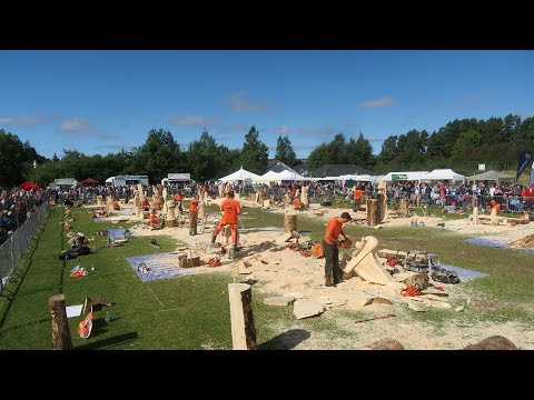 Carve Carrbridge 2017