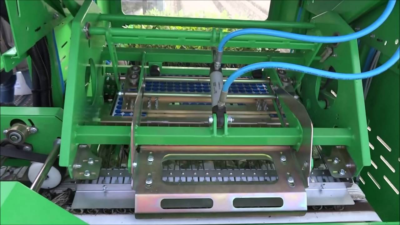 Download automatic transplanter Agriplanter - 1SP - tomatoes