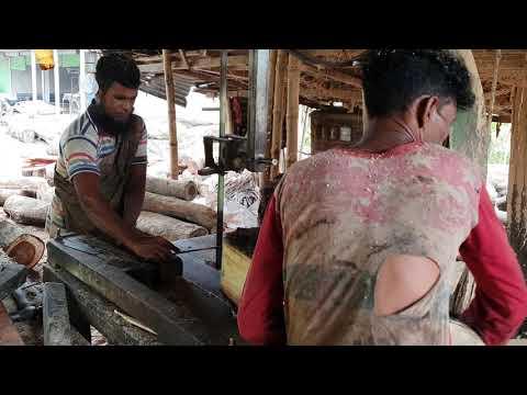 Wood Cutting Unbeaten Craftsman in Village Sawmill। Great Wood Workers