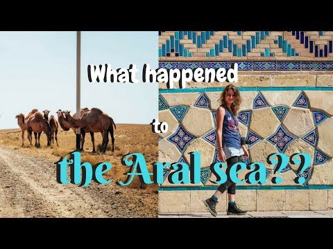 Discovering the Aral Sea and Turkestan - Road trip around Ka