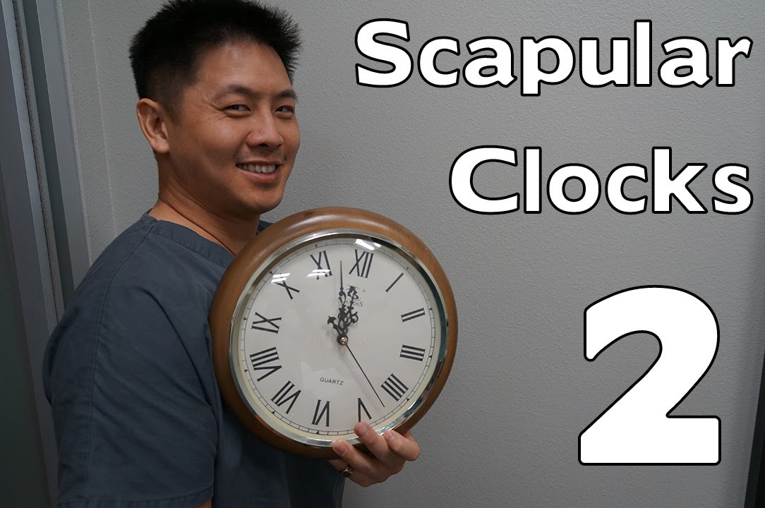 Scapular Clocks  Neuromuscular Awareness  Shoulder