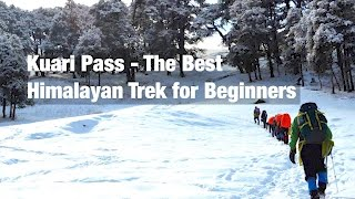 Why Kuari Pass is the Best Himalayan Trek for Beginners